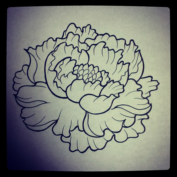 I had to draw what seems like a shitload of peonies today for What to draw today
