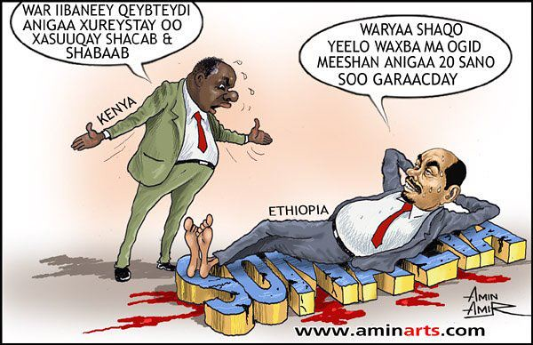 Somali Dhuuqmo Sawiro: Amin Amir Iyo Somalia