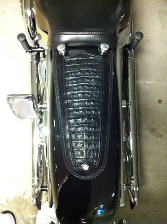 Harley Davidson Softail Deluxe >> 2011 Harley Softail Deluxe fender bib | top view of 2011 Har… | Flickr