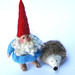 gnome and pet hedgehog