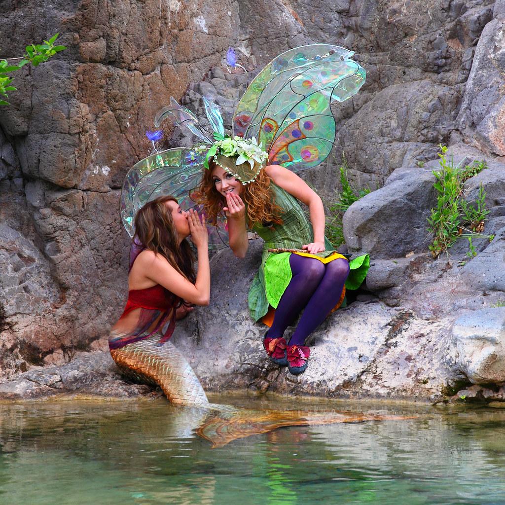 Twig The Fairy & Mermaid Friend