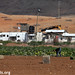 Agricultural work in Khirbet Humsa, Jordan Valley, 12.01.2012