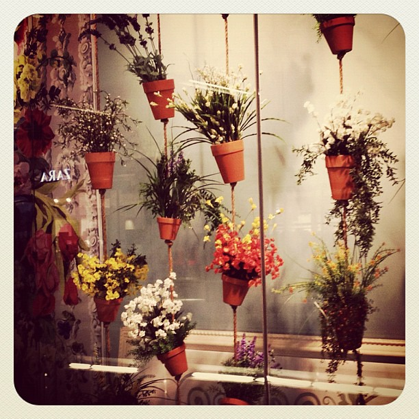 Cute Window Display With Flower Pots.