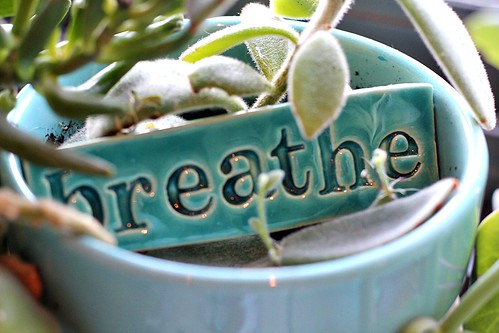 breathe | by Mae Chevrette