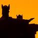 argonath silhouette side