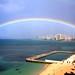 rainbow-Clinton Gaughran 2011