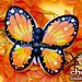 Farewell Butterfly