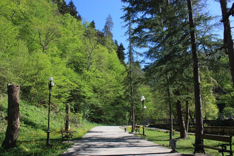 Парк Боржоми Грузия