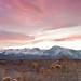 Owens Valley Sunset (Eastern Sierra Nevada)