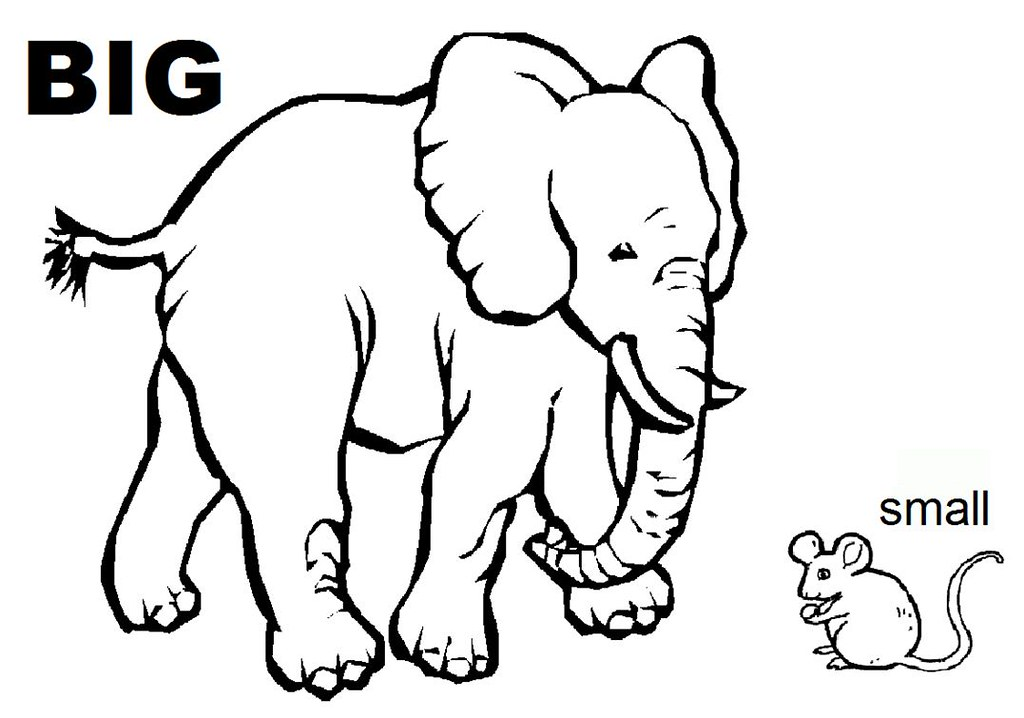 opposites coloring sheet we handed out this coloring sheet flickr rh flickr com big and small objects coloring pages big and small coloring sheets