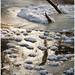 20120201. Kabala. Vigala river. Another cold morning. 2714. 1.