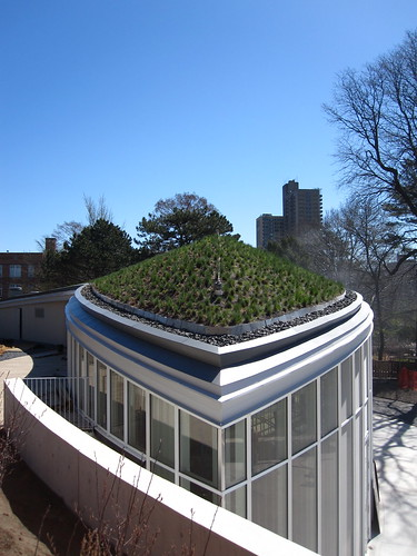 BBG Visitor Center green roof | by Brooklyn Botanic Garden