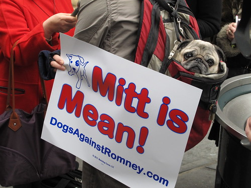 Dogs Against Romney protest outside Madison Square Garden | by AndrewDallos