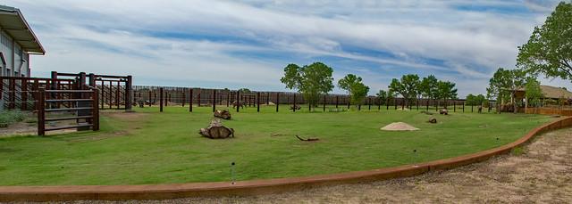 27791738281 ce65782c9d z Great Zoo Exhibit: Elephants of the Zambezi River Valley