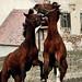 Zombie horses!