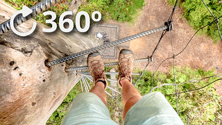 Climbing a 75ft tree Youtube 360 video