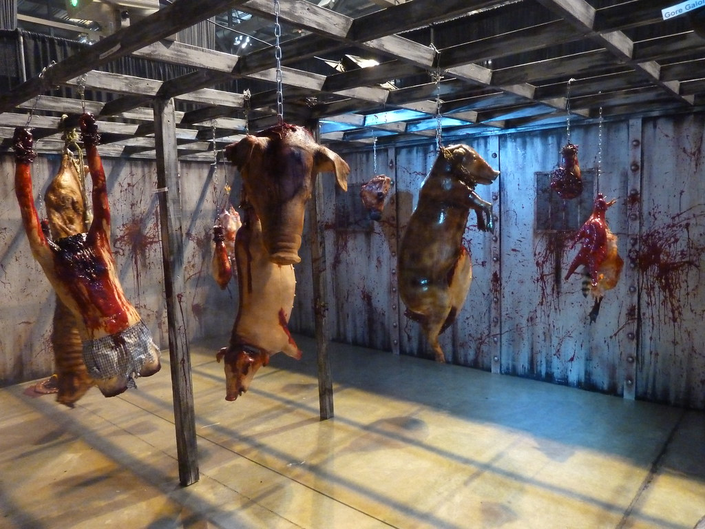 The Craziest House Ideas You Need To Read: Interactive Haunted House At Transworld Haunt Show