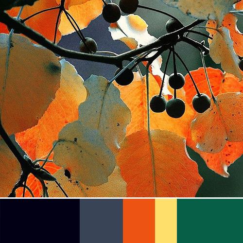 Color Palette Navy Blue Gray Orange Pale Yellow Tea