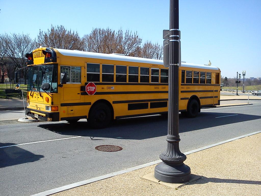 Bus report