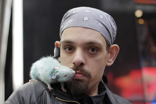 man kissing blue rat times square nyc this gentleman