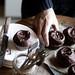 cupcakes & news!