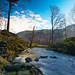 Thirlmere Tributary 2