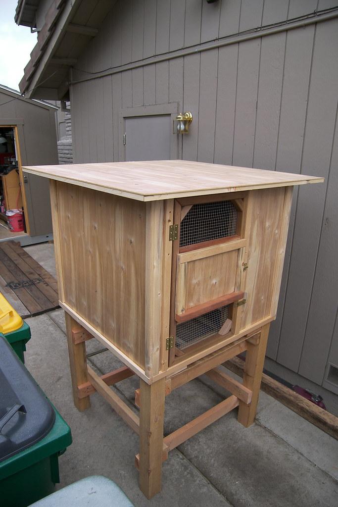 Birmingham Roller Pigeon Kit Box Birmingham Roller: how to build a dovecote free plans