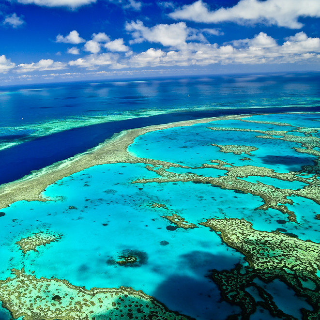 how to get the great barrier reef