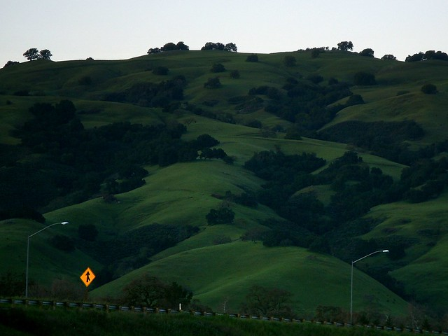Green Season Pacheco Pass Highway Near Gilroy And