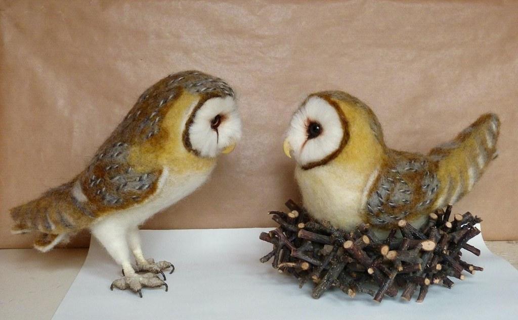 owl size