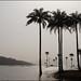 Lagune de Samaya (Guinée maritime)