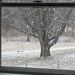 Snowfall through the upstairs windows 3 - FarmgirlFare.com