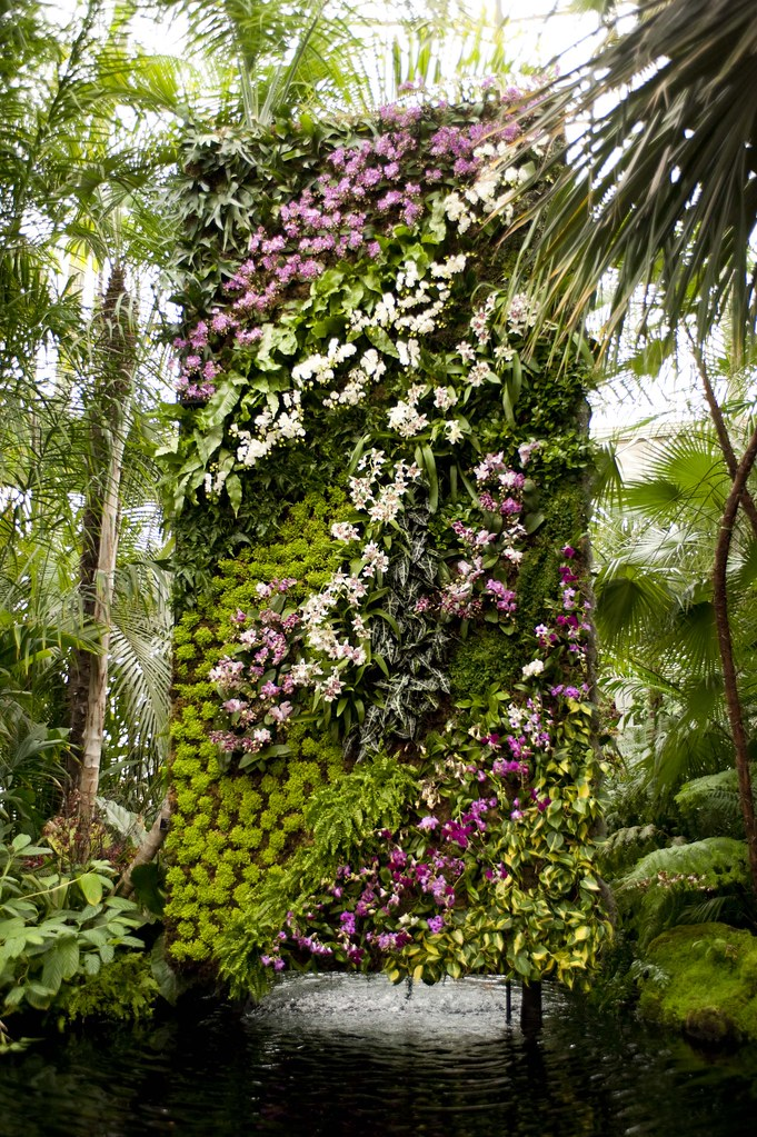 The Orchid Show Patrick Blanc 39 S Vertical Gardens Flickr