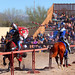 Impact!!! 2012 Arizona Renaissance Festival (ARF)