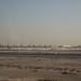 Dawn in Doha