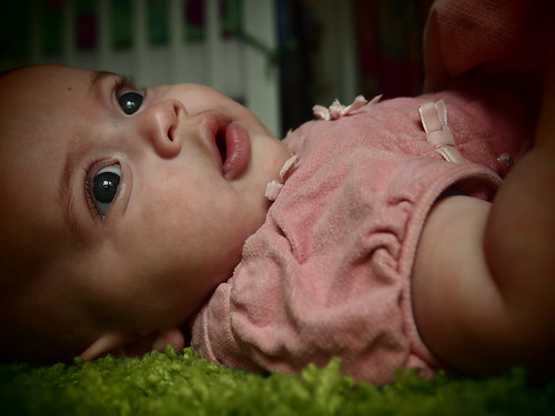 Revi, five months | by girlsgonechild