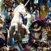 Unicorn and Renaissance Cat