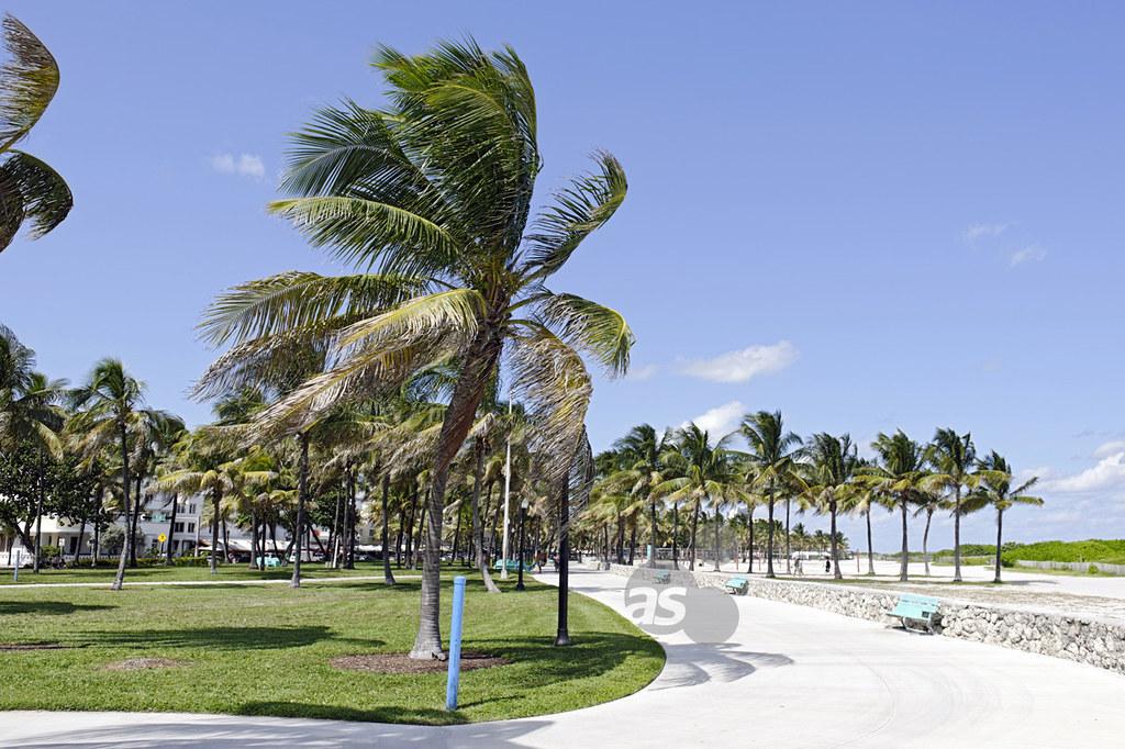 lummus park, miami south beach, art deco district, florida