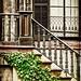 Savannah Southern Style by Jim Crotty