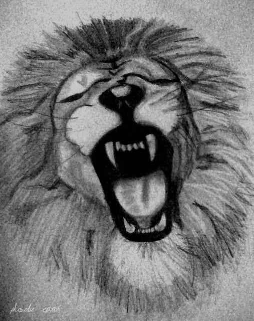 Dibujos a lapiz leon - Imagui
