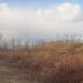 Meadowlands / Secaucus 3