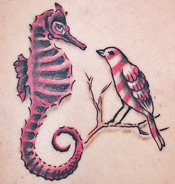 Modest mouse seahorse bird tattoo flickr photo sharing for Modest mouse tattoo