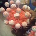 Pink Princess Crown Cake Pops