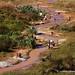 Madagascar - slice of life : gold rush