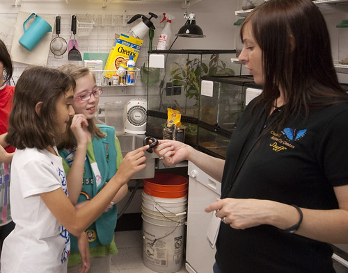 Girl Scouts - Careers In Science | by Houston Museum of Natural Science