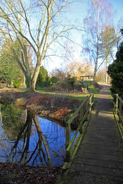 Gooderstone water gardens 25 02 2012 billy knights a for 7194 garden pond