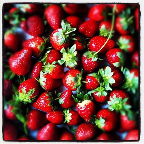 Strawberries | by TheBrewer&TheBaker