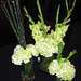 St. Patrick's Day Flowers  - Shirley's Flowers & Gifts, Inc., in Rogers, Ark.