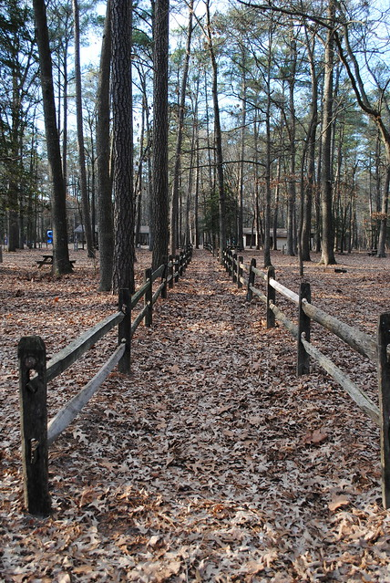 Trap pond state park flickr photo sharing for 7194 garden pond