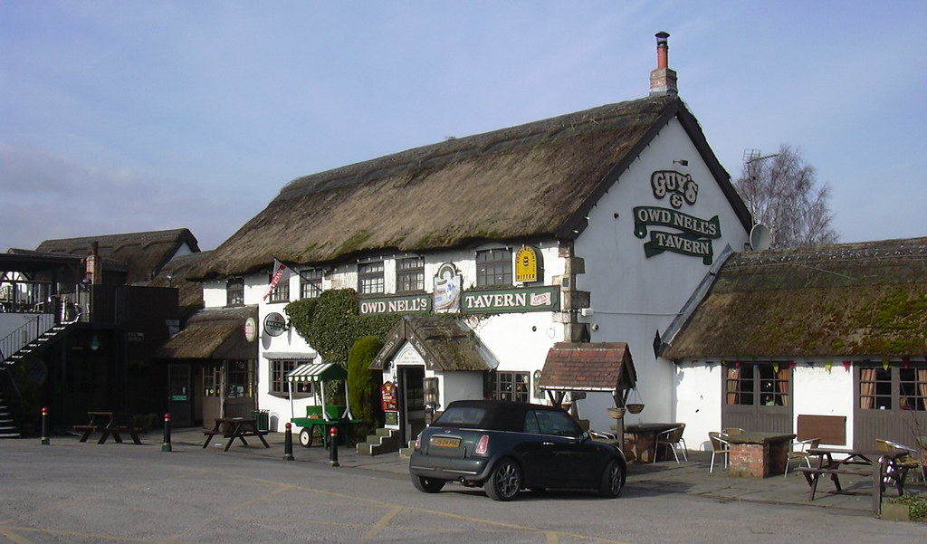 Is Thatched Tavern Maidencombe Dog Friendly
